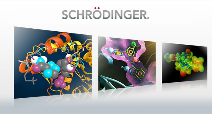Schrödinger, LLC