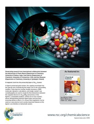 gascon-maran-chemical-science-cover