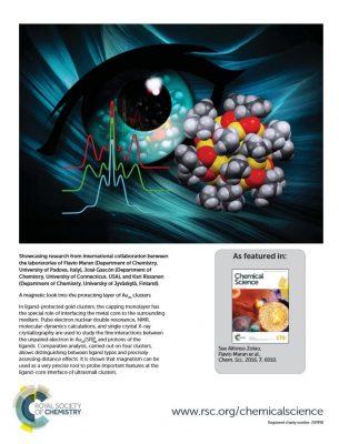 gascon-maran-chemical-science-cover