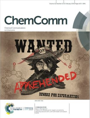Pinkhassik Group on Cover of Chem Comm
